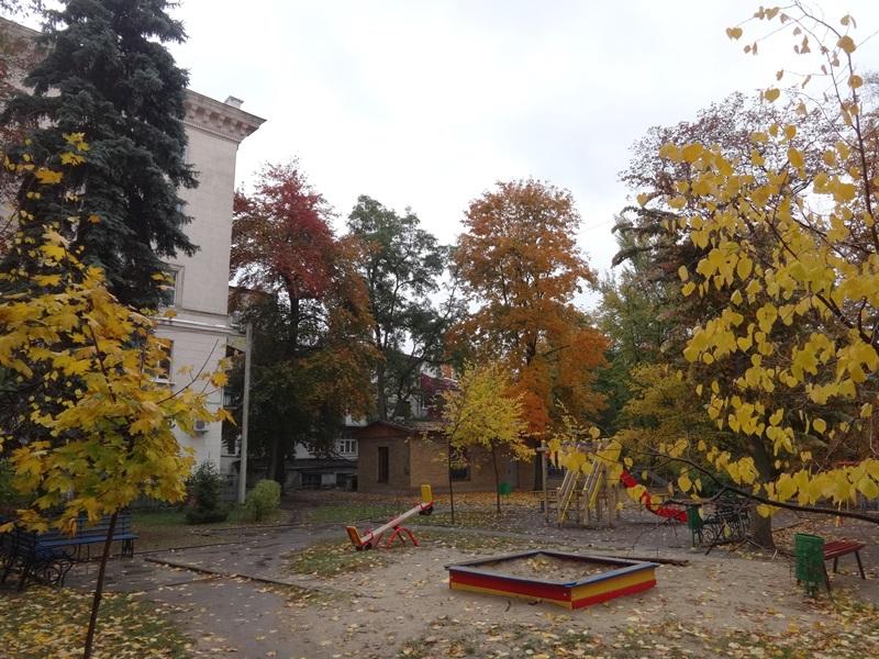 Харьковчане ищут в подворотнях золото