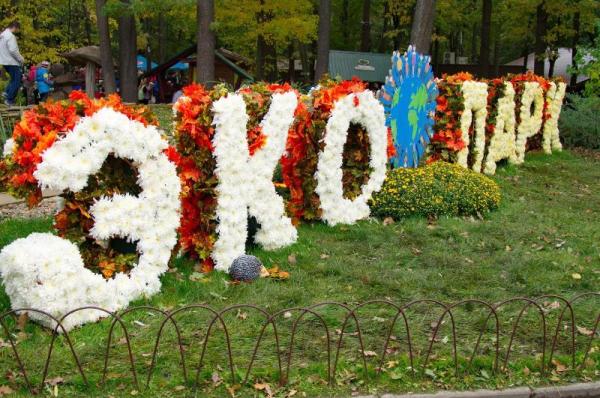 Рекордное количество гостей приехало в Фельдман Экопарк (фото)