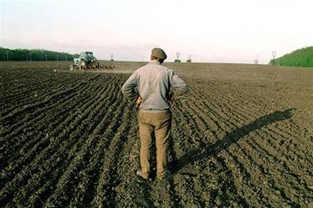 Что разорит харьковских аграриев