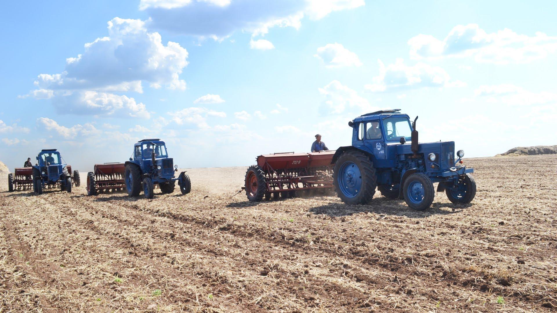 Поздняя весна спутала карты аграриям (ИНФОГРАФИКА)