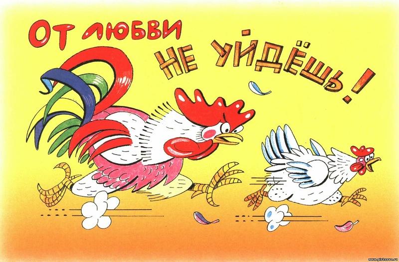http://gx.net.ua/news_images/1459429218.jpg