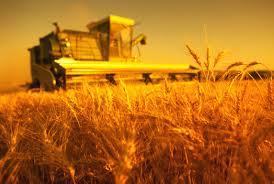 Харьковский аэропорт оккупируют фермеры