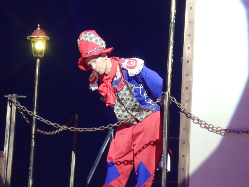 В цирке травмировали ребенка