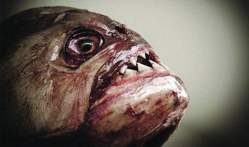 Рыба пыталась убить женщину в Харькове
