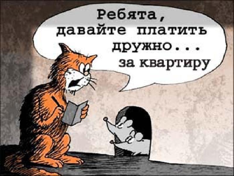 http://gx.net.ua/news_images/1484147588.jpg