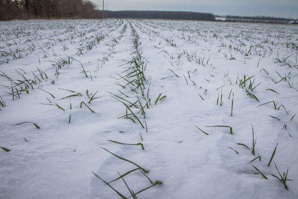 На Харьковщине с опасением ждут весны