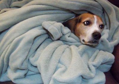 Как правильно спать, чтобы не поправляться
