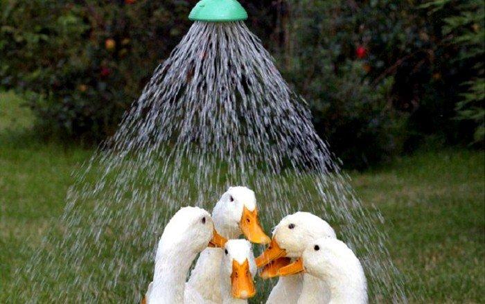Воду отключили в домах харьковчан (список адресов)