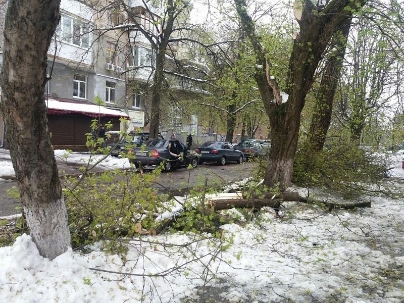 Последствия стихии в Харькове. Новая информация