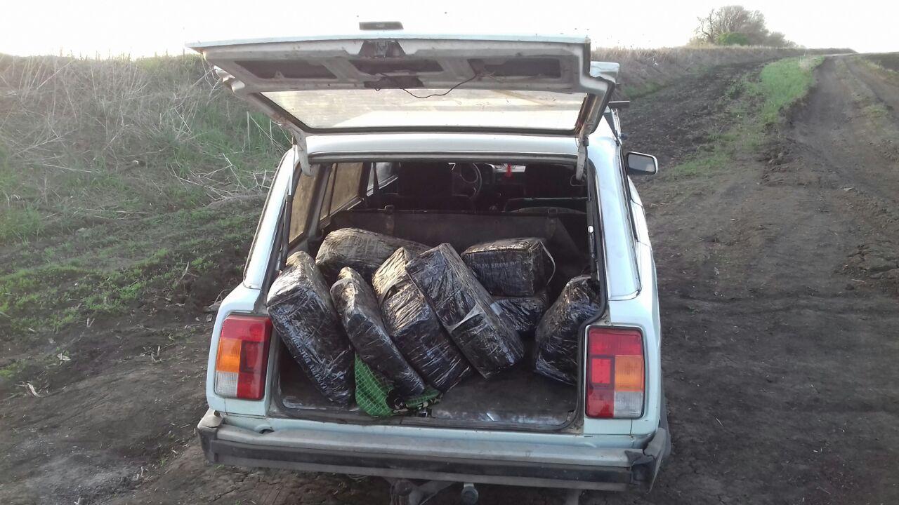 В поле под Харьковом двух мужчин поймали за деликатным занятием