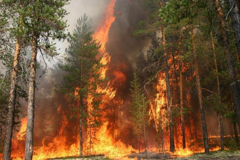 Максимальный уровень опасности объявили в Харьковской области