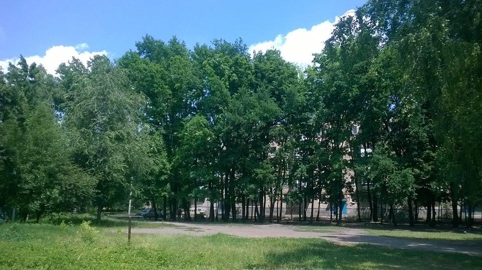 Жители Харькова возмущены варварскими поступками коммунальщиков (фото)