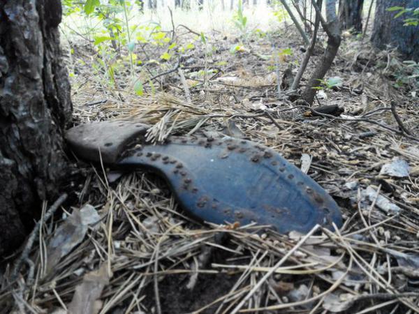 Шокирующую находку обнаружили в лесу на Харьковщине