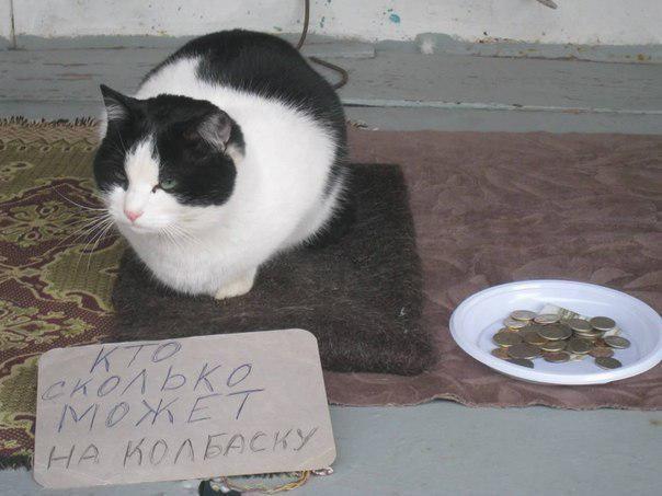 Улицы Харькова заполонили неприятные личности