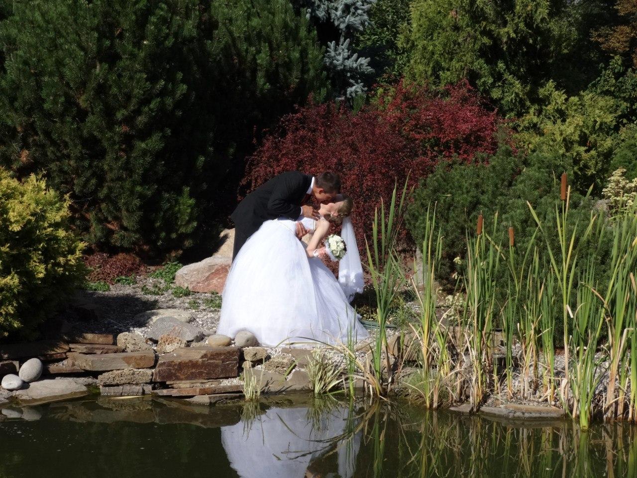 Харьковчане выглядывают радугу и спешат пожениться