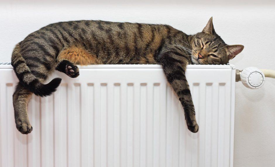 Проблемы с отоплением могут возникнуть в Украине этой зимой