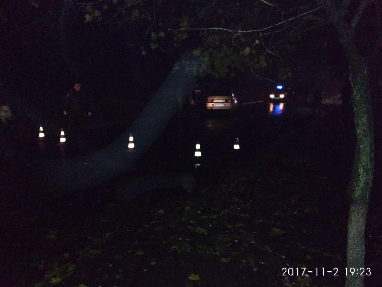 Очевидцы аварии в Лозовой: Женщина с детьми пошла прямо под машину (дополнено)