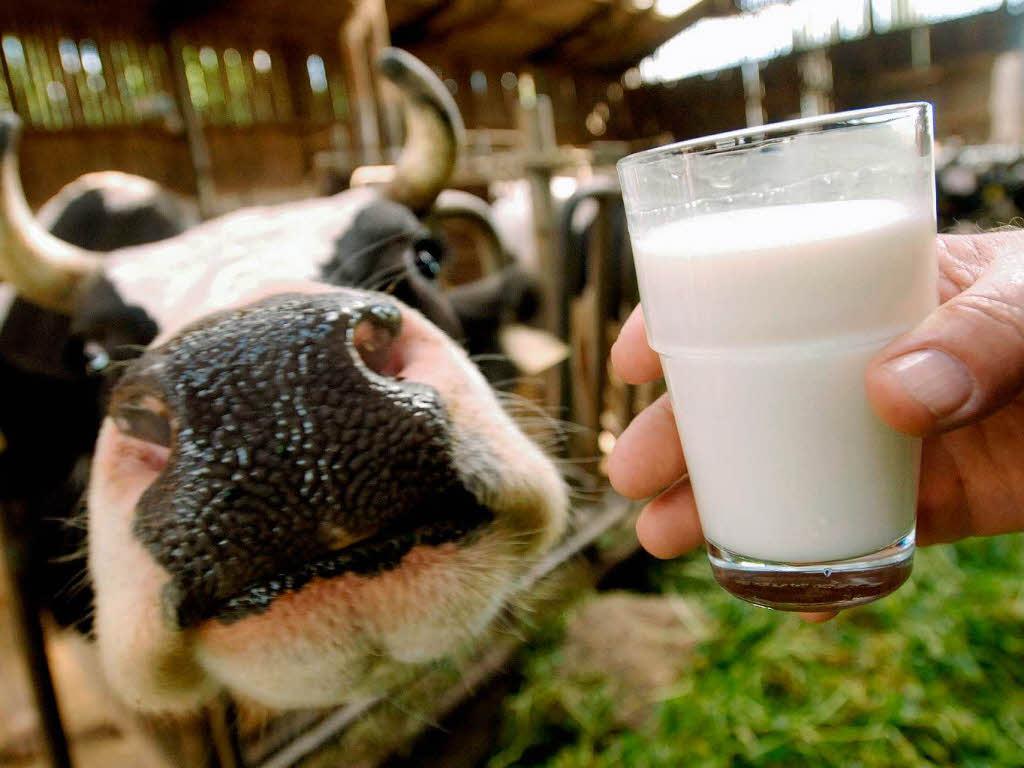 Стоимость молочных продуктов в Украине существенно увеличится