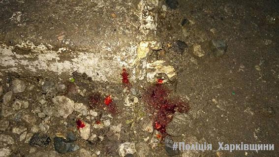 Жестокую расправу над другом учинил житель Харьковщины