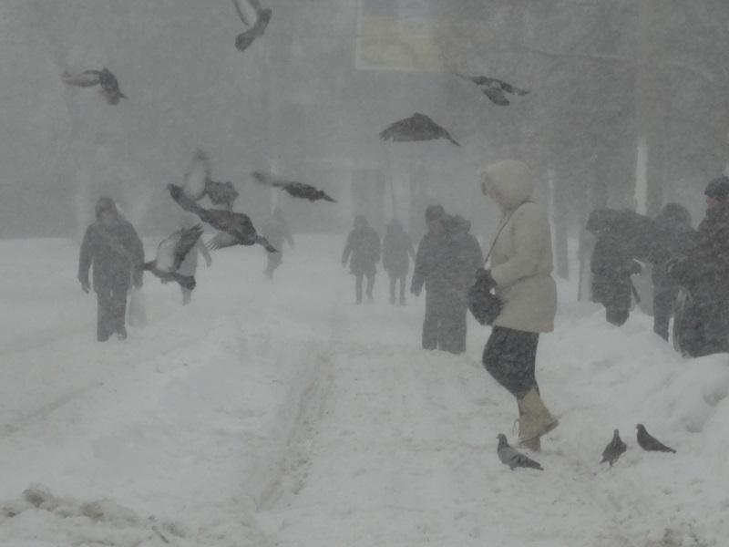 http://gx.net.ua/news_images/1519896671.JPG