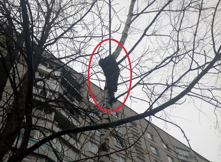 http://gx.net.ua/news_images/1522689916.jpg