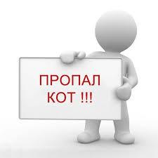 Ребенок поставил на уши пол-Харькова из-за серого кота