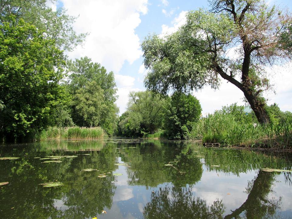 Группа харьковчан устроит налет на местную реку