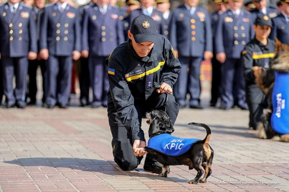 Пенсионера из Харькова пожизненно снабдили едой за счет государства (фото)