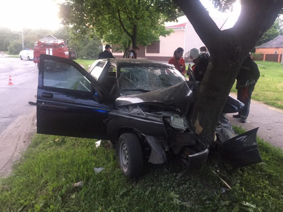 В Харькове дерево убило мужчину (ФОТО)