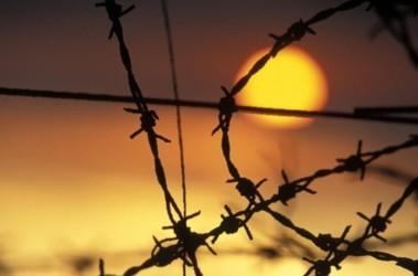 Закон Савченко: на Харьковщине каждый тридцатый возвращается в тюрьму
