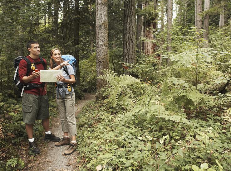 Опасность подстерегает харьковчан в лесах