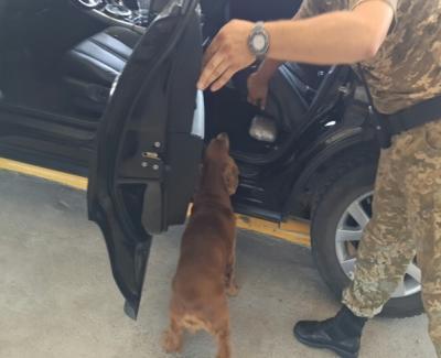 Колеса с сюрпризом обнаружили на границе (ФОТО, ВИДЕО)