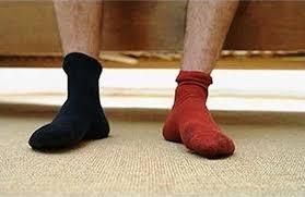 Собака заставила мужчину снять носки