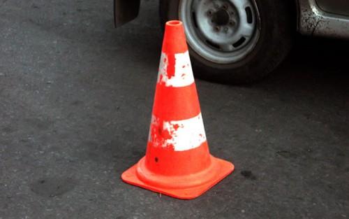 Живность заблокировала движение на Окружной дороге Харькова (ФОТО)