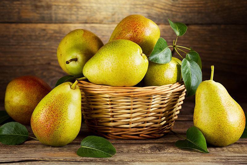 Огромный фрукт вырастили в Харьковской области (фото)
