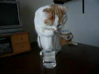 В Харькове снова нет воды