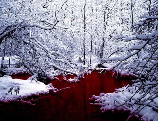 Кровавые реки потекли по Харькову (ФОТО)