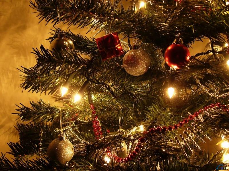 Чиновники Светличной встретят Новый год на работе