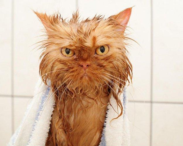 Харьковчанам придется забыть о горячей ванне