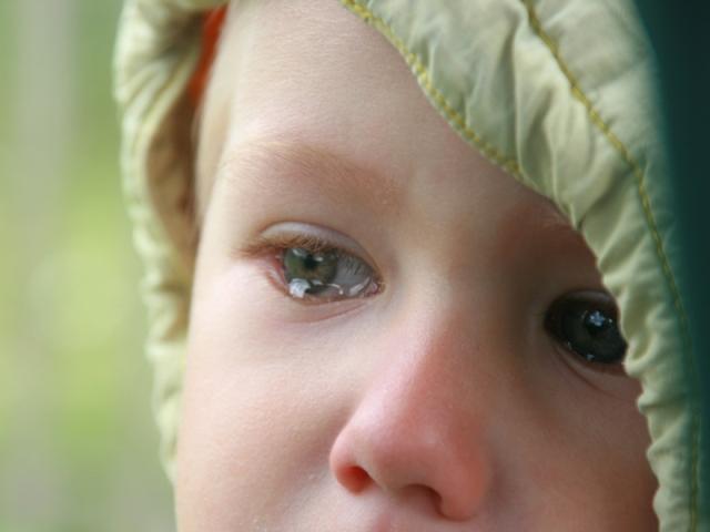 Малыш пострадал от рук харьковских бандитов
