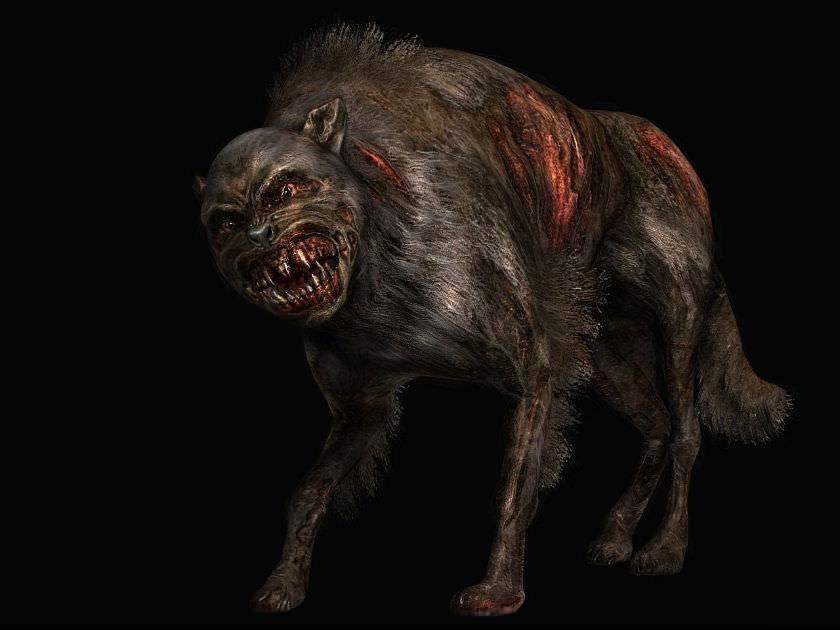 Неизвестный зверь держит в страхе целый поселок под Харьковом