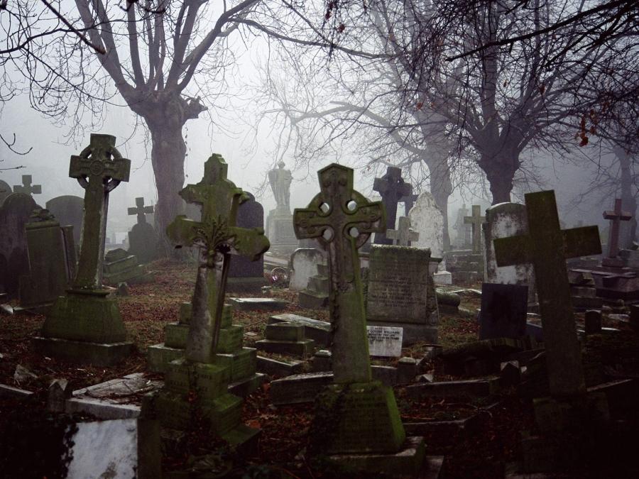 Шокирующую находку обнаружил сторож на кладбище в Харьковской области