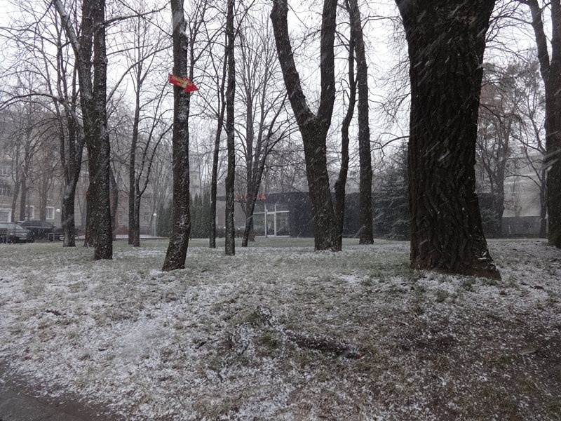 Утро понедельника в Харькове началось с сюрпризов (Фото)
