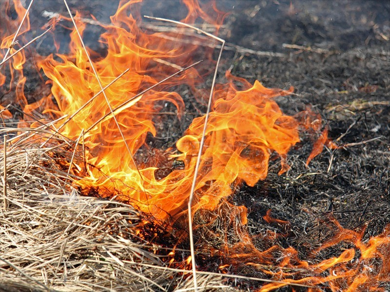 На Харьковщине при пожаре сильно обгорел мужчина