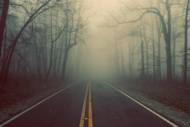 Новая дорога появилась в Харькове