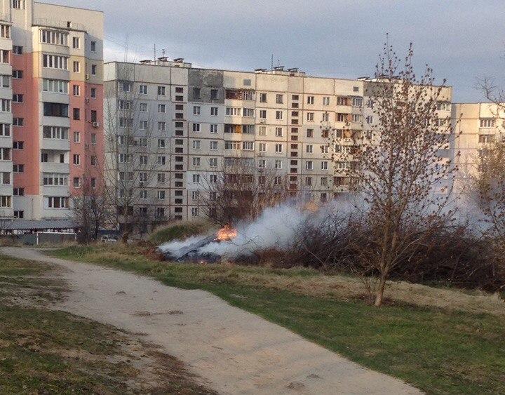 В Украине хотят ввести серьезное наказание для любителей костров (фото)