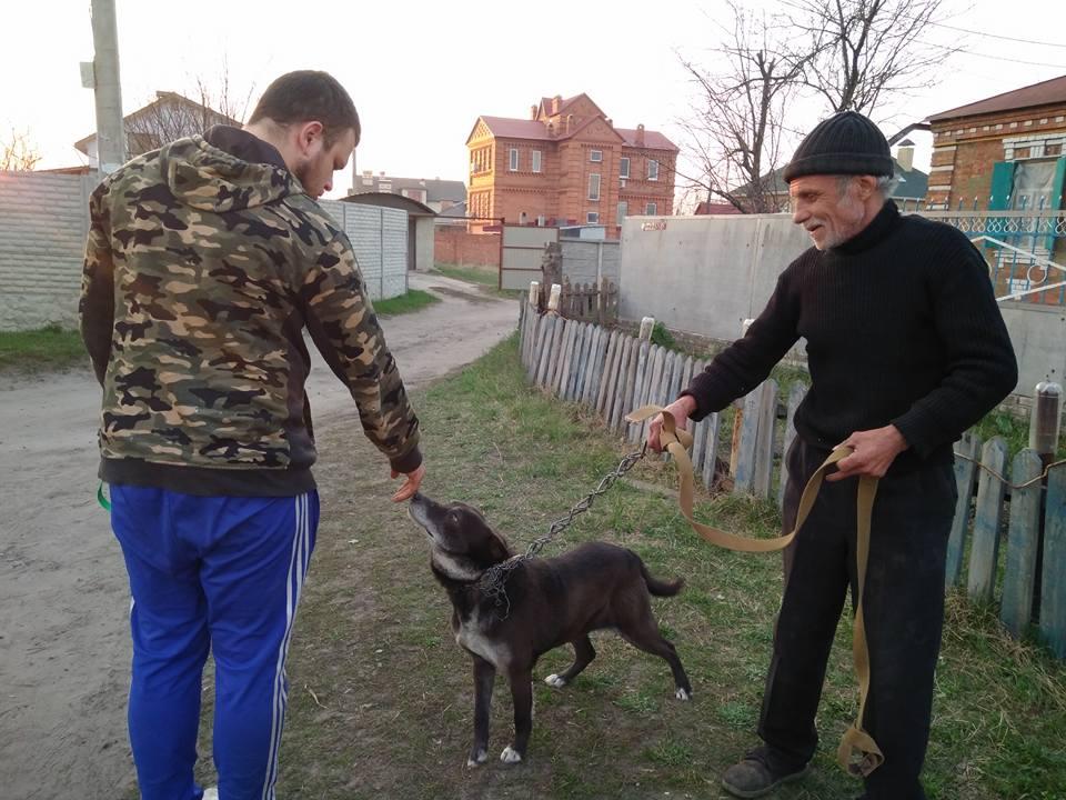 В Харькове пес отказался жить в родном дворе из-за нахлынувших чувств