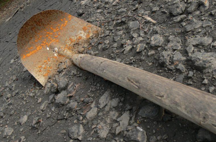 Из харьковского парка исчез главный символ