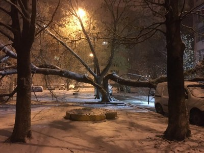 Снегопад в Харькове. Первые последствия (фото)