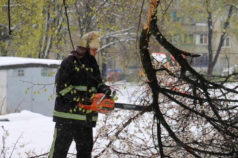 Снегопад в Харькове. Новые данные о последствиях (фото, видео)
